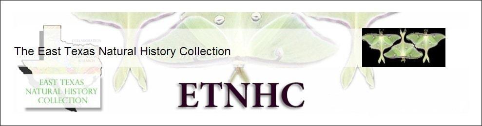 ETNHC