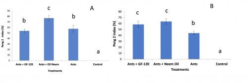 Influence of treatments on the abundance of <em>Oecophylla longinoda</em> by the Peng 2 method, Feké Orchard (A); Ouangolo Orchard (B)