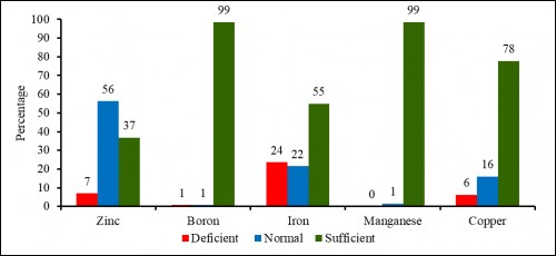 Percentage of Micro nutrients in different category under sampling area