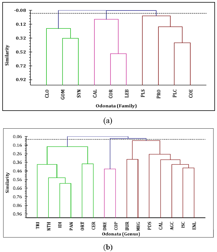 The cluster analysis to represent the relative similarity of the different families (a) and genera (b) depending on the relative abundance in each sample collected from the wetlands of West Bengal.