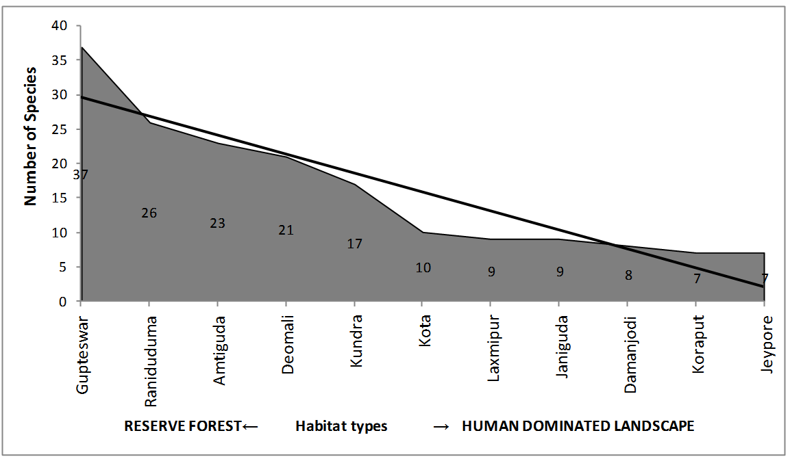 Trend in Odonate diversity along different sampling sites